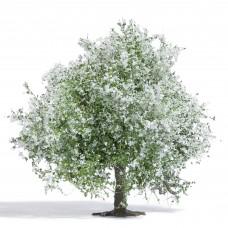 Busch 3651 Apfelbaum 75 mm, blühend