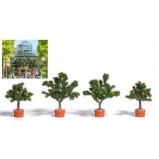 Busch 6619 Vier Zitrusbäume in Pflanzkübel