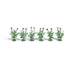 Busch 1248  6 Klatschmohnpflanzen