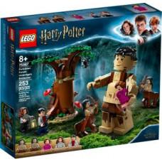 Lego 75967 Der Verbotene Wald: Begegnung mit Umbridge