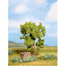 Noch 21600 Birnbaum