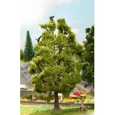 Noch 21782 Baum mit Vogelzwitschern
