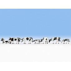 Noch 36721 Kühe, schwarz-weiß