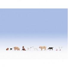 Noch 36711 Tiere auf dem Bauernhof N