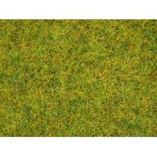 Noch 08310 Streugras Sommerwiese, 2,5 mm, 20 g Beutel